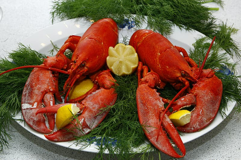 Best Lobster Restaurant Seafood Port Jeff