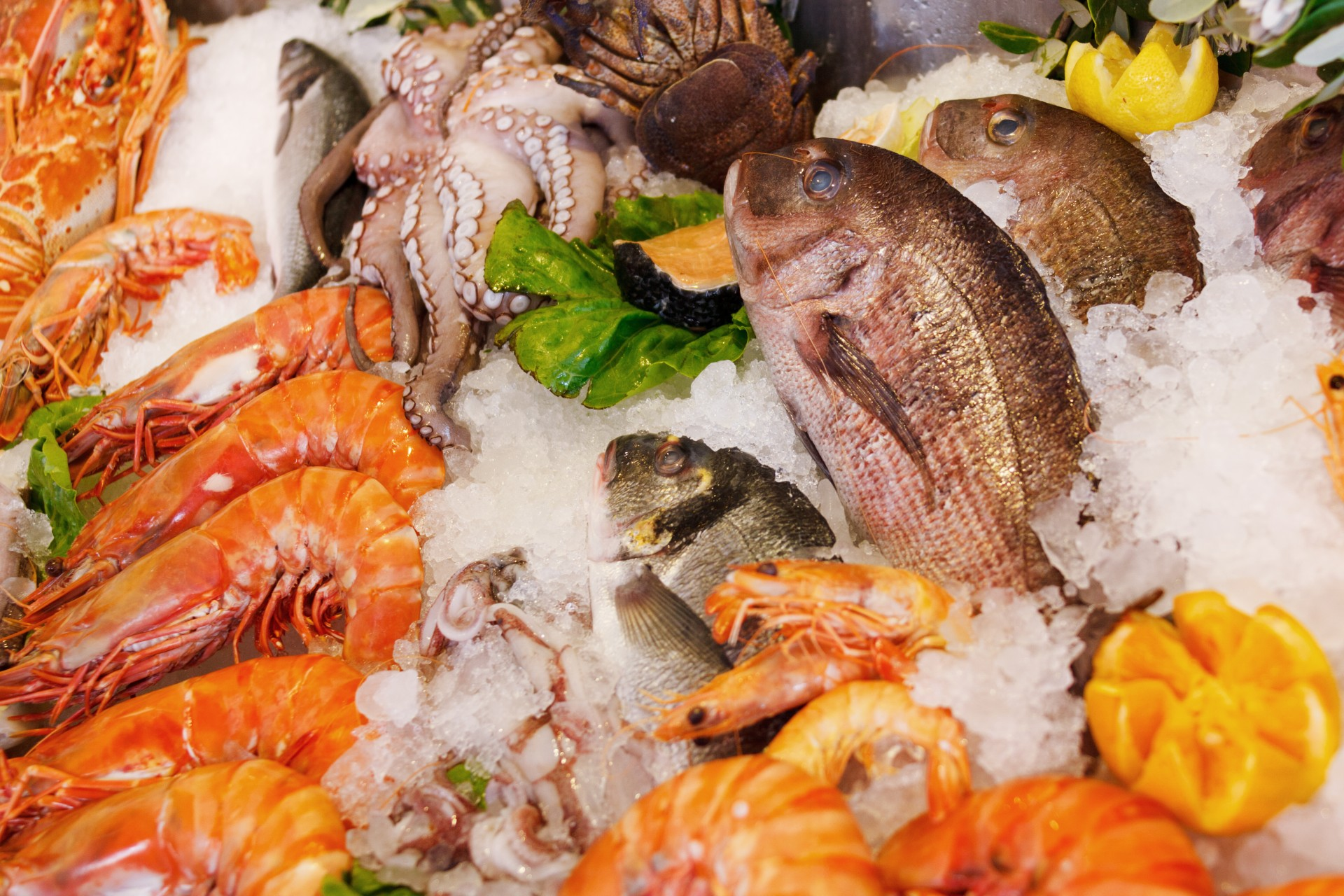 best seafood market suffolk county
